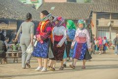 Niektóre mniejszości etnicznej kobieta przy starym Dong Van rynkiem fotografia royalty free