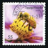 NIEMCY - OKOŁO 2010: Poczta znaczek drukujący w Niemcy pokazuje Miodowej pszczoły i kwiatu, około 2010 Obraz Stock