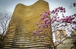 Niemeyers byggnad Royaltyfri Bild