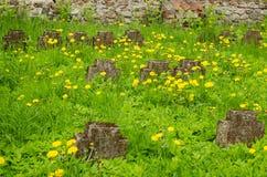 Niemieccy żołnierze Cmentarniani Obrazy Royalty Free