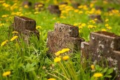Niemieccy żołnierze Cmentarniani Zdjęcia Royalty Free