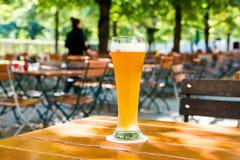 Niemiecki piwo obrazy royalty free