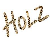 Niemiecki słowo Holz wypełniający z drewnianym kawałkiem Zdjęcia Royalty Free