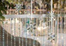 Śnieżni płatków cystals Obraz Royalty Free