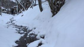 Śnieżny zatoczki wody przepływ w zima parka kanale 4K zdjęcie wideo