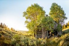 Nieociosana beli kabina w górach Idaho zdjęcie stock