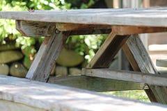 Nieociosana drewniana pykniczna ławka Zdjęcie Stock