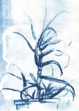 Nieociosana kwiecista ilustracja i akwareli sztuka Fotografia Royalty Free