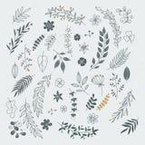 Nieociosana ręka rysujący ornamenty z gałąź i liśćmi Wektorowe kwieciste ramy i granicy ilustracji