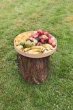 Nieociosana taca różne owoc pełno kłaść na górze drzewnej beli obrazy stock