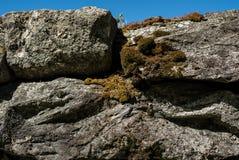 Nieociosana tradycyjna skały ściana z bryłą, duże skały brogować na górze each inny Zdjęcia Stock