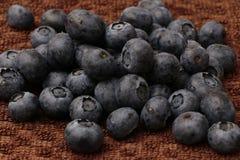 Nieociosane czarne jagody obrazy royalty free
