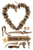 Nieociosani Driftwood symbole, znak i fotografia royalty free