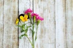 Nieociosani kwiaty Fotografia Royalty Free