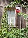 Nieociosany budynek i birdhouse Fotografia Stock