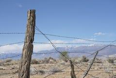 Nieociosany drutu kolczastego ogrodzenie Zdjęcie Stock
