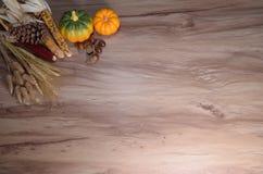 nieociosany jesieni wciąż życie z baniami Obraz Royalty Free