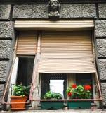 Nieociosany okno z połówki podnosić żaluzjami Zdjęcie Stock