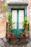 Nieociosany okno z roślinami Obraz Royalty Free