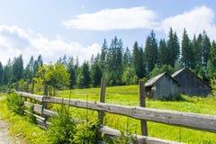 Nieociosany podwórze za drewnianym ogrodzeniem zdjęcie royalty free