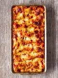 Nieociosany włoch piec szpinaka ricotta cannelloni makaron obraz royalty free