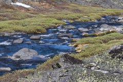 Nieosłonięta strumień rzeka w półwysepa Kola Obraz Royalty Free