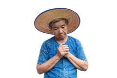 Niepokój kobiety stary Azjatycki rolnik na bielu obrazy royalty free