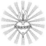 Niepokalany Kierowy maryja dziewica royalty ilustracja