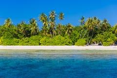 Nieporuszona tropikalna plaża, Maldives plaża Obraz Royalty Free