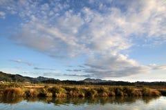 nieporuszony coromandel brzegowy półwysep Fotografia Royalty Free