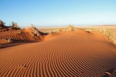 Nieprawdopodobne piasek diuny blisko Sossusvlei i Deadvlei w de Namib pustyni zdjęcia royalty free