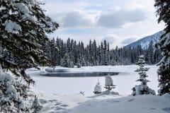 Nieprawdopodobni śnieżni widoki od Wyspa jeziora w Fernie, kolumbia brytyjska, Kanada Majestatyczny zimy tło jest pięknem zdjęcia royalty free