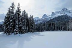 Nieprawdopodobni śnieżni widoki od Wyspa jeziora w Fernie, kolumbia brytyjska, Kanada Majestatyczny zimy tło jest pięknem zdjęcie royalty free