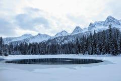 Nieprawdopodobni śnieżni widoki od Wyspa jeziora w Fernie, kolumbia brytyjska, Kanada Majestatyczny zimy tło jest pięknem obraz stock