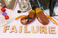 Nier of de bijnierfoto van het mislukkingsconcept De nier met gelijmd zwart kruis is dichtbij woordmislukking en reeks medische t stock foto's
