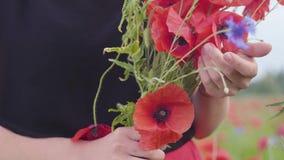 Nierozpoznany kobiety mienia bukiet kwiaty w maczka polu Zwi?zek z natur? Zielona i czerwona harmonia leisure zbiory