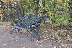 Nieruchomość Kuskovo Ławka w jesień parku Zdjęcie Royalty Free