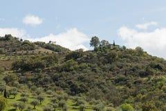 Nieruchomość wśród winniców Douro rzeki dolina Fotografia Stock