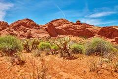 Niesamowicie piękny krajobraz w Południowym Nevada, dolina Pożarniczy stanu park, usa Obrazy Royalty Free