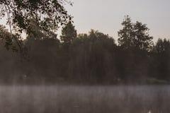 Niesamowity jezioro z mgłą Lokacja: Niemcy, Północny Westphalia, zdjęcia stock