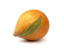 Niesplik owoc Obrazy Stock