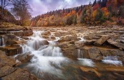 Niespokojna niebezpieczna halna rzeka z kamieniami Rzeka w jesień lesie Zdjęcie Stock
