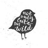 Niet alleen het leuke maar wilde van letters voorzien in vogel Stock Afbeelding