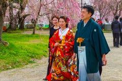 Niet geïdentificeerde Japanse mistroostigheid en bruid bij Hirosaki-park stock afbeelding