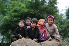 Niet geïdentificeerde jonge geitjes in bergachtig district van Dong Van Royalty-vrije Stock Fotografie
