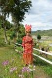 Niet geïdentificeerde Mong-stam jonge vrouw met traditionele kleren Royalty-vrije Stock Afbeeldingen