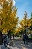 Niet geïdentificeerde peple geniet de herfst van seizoen bij het Kasteel van Himeji complex in Himeji, Hyogo-Prefectuur, Japan stock afbeelding