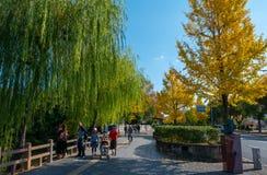Niet geïdentificeerde peple geniet de herfst van seizoen bij het Kasteel van Himeji complex in Himeji, Hyogo-Prefectuur, Japan royalty-vrije stock fotografie