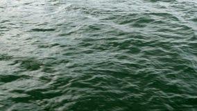 Niet kalme, lopende overzeese golf met rimpelingen die in de Zwarte Zee lopen Zonbezinning stock videobeelden