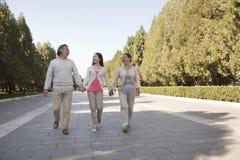 Nieta con los abuelos que caminan en el parque, celebrando las manos y la sonrisa Foto de archivo